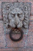 Lion's a head — Stockfoto