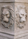 Head of a lion — Stock Photo