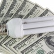 Stock Photo: Energy saving lamps