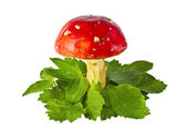 Fly agaric mushrooms among leaves — Stock Photo