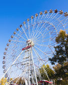 Large Ferris wheel — Foto Stock