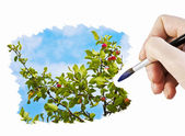 Draw an apple orchard — Stock Photo