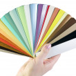 Sample blinds in the hand - Foto Stock