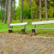Two free benches in rainy autumn park — Stock Photo