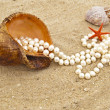 Cockleshell with a pearl necklace — Stock Photo