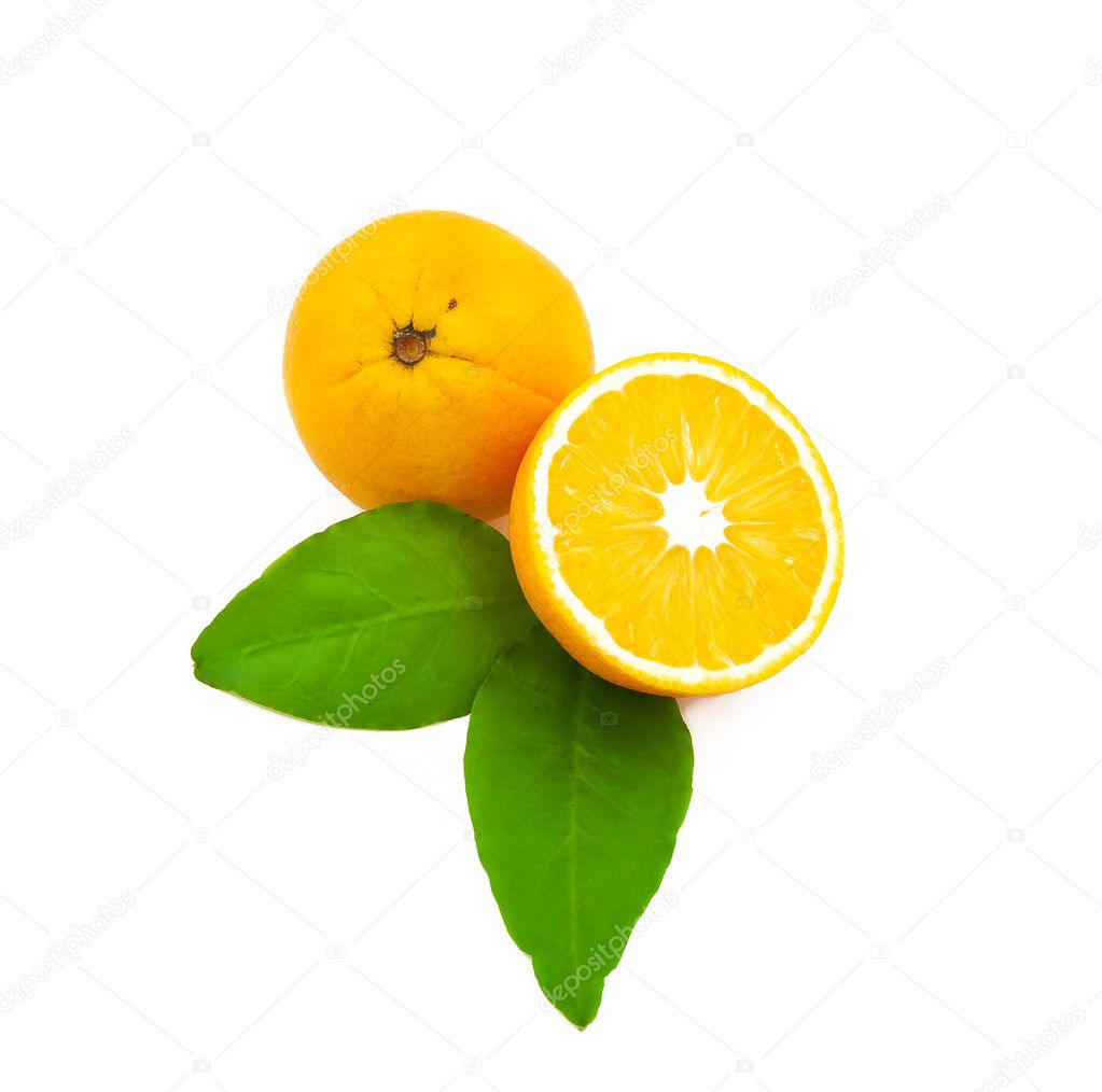 Group of citrus on a white background  Stock Photo #1329301