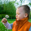 Royalty-Free Stock Photo: The boy with a dandelion