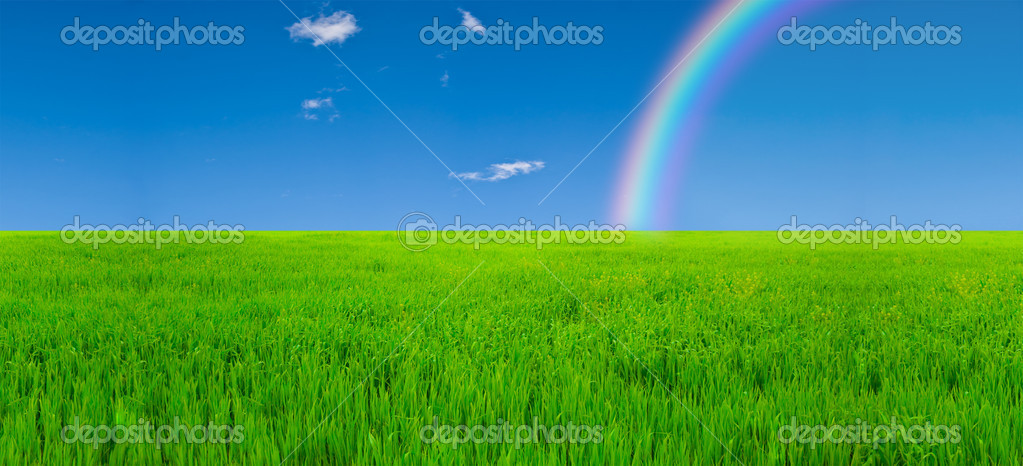 Field and rainbow — Stock Photo #1343279