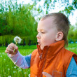 Stock Photo: The boy with a dandelion