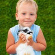 Child holding on hands of a small rabbit — Stock Photo