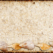 Stock Photo: Background from sand and shells