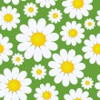 Stock Vector: Seamless pattern with camomile flowers