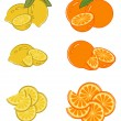 Set of lemon and orange slices — Stock Vector