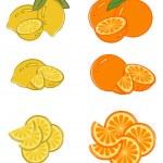 Set of lemon and orange slices — Stock Vector