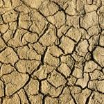 Dry wethered land background — Stock Photo