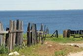 Coast of Volga — Stock Photo
