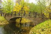 Walk to the bridge — Stock Photo