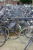 Asta di biciclette — Foto Stock
