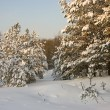 Стоковое фото: Secluded corner of Russia
