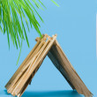 Stock Photo: Straw hut