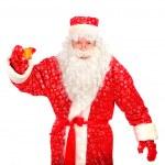 Santa claus — Stock Photo #1325587