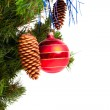 Christmas tree — Stock Photo #1326135