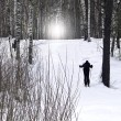 Skier in forest — Stock Photo