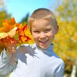 Boy with leafs — Stock Photo