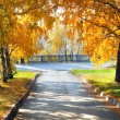 Autumn park — Stock Photo #1331686