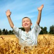Royalty-Free Stock Photo: Kid in wheat field