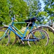 Two old bicycle — Stock Photo #1657034