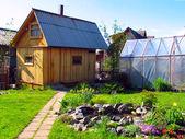 Giardino estivo — Foto Stock