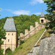 Karlstein castle — Stock Photo #1303149