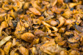 Broiled chanterelles — Stock Photo