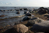 Gulf of Finland coastline — Stock Photo