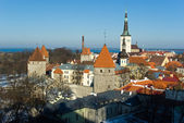 Old Talinn panorama — Stock Photo