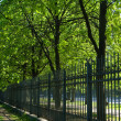 Along the fence — Stock Photo #1350409