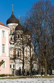 Alexander Nevsky Cathedral — Stock Photo