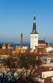 Old Tallinn panorama — Stock Photo