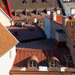 Royalty-Free Stock Photo: Old Tallinn Roofs