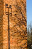 Street lamp on tree shadow on brick wall — Stock Photo