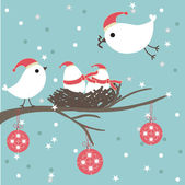 Christmas card with bird couple. — Stock Vector