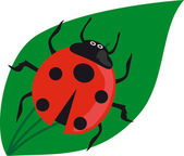 Ladybird on green leaf. — Stock Vector