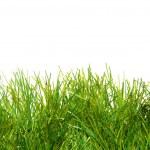 verde exuberante césped artificial — Foto de Stock