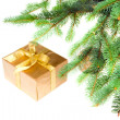 Stock Photo: Christmas gift under the tree