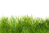 Zelené svěží umělá tráva — Stockfoto