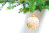 Christmas decoration on tree — Stock fotografie
