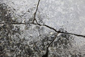 Cracked granite after rain — Стоковое фото
