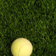 Grass and tennis ball — Stock Photo