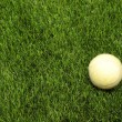 Grass and tennis ball - 图库照片